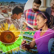 Urbanisation and Health - Promoting  Sustainable Solutions