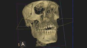 Introduction to Dental Medicine