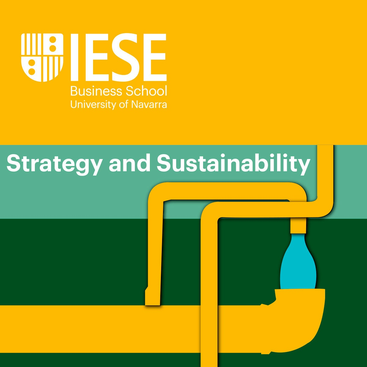 A Hardnosed and Clear-Eyed Approach to Environmental Sustainability For Business Strategy and Sustainability