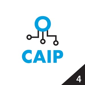 Caip-specialization-icon-4