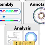 Bacterial Bioinformatics