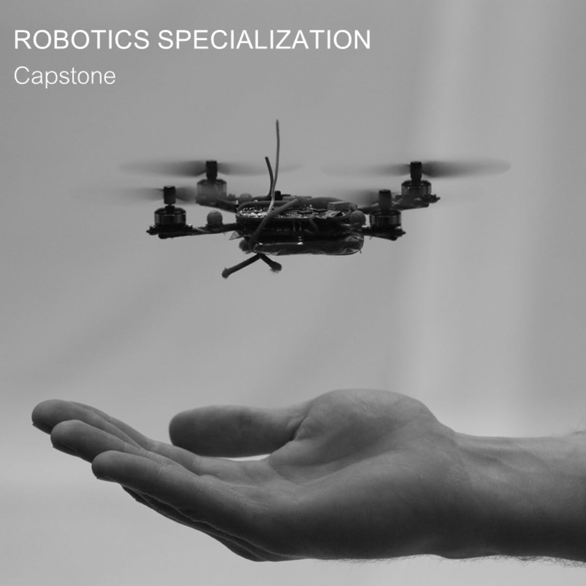 Robotics: Capstone