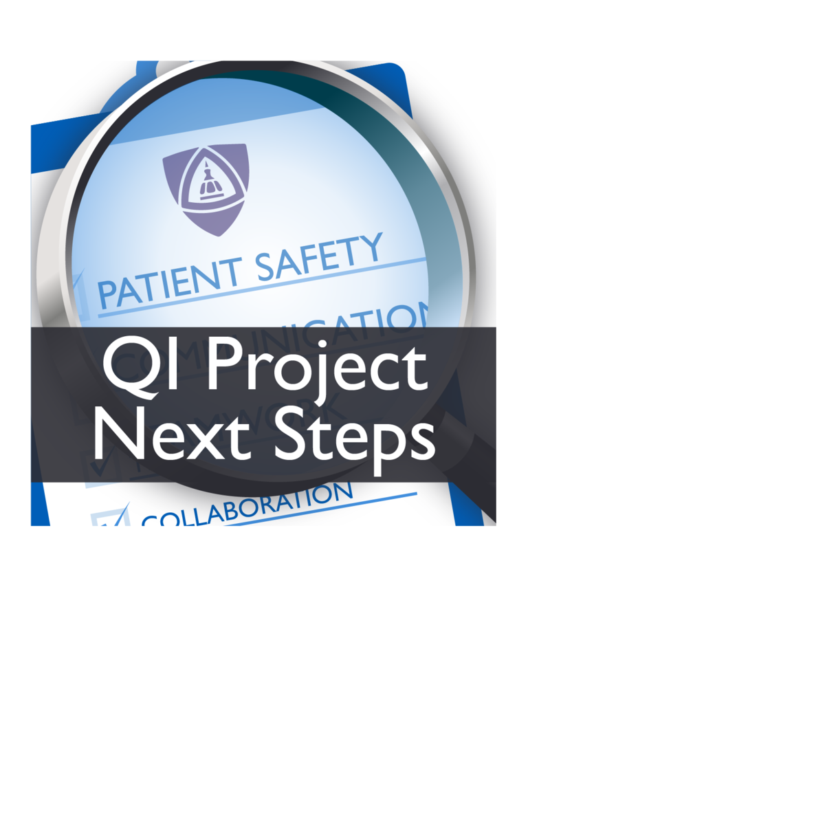Implementing a Patient Safety or Quality Improvement Project (Patient Safety V)