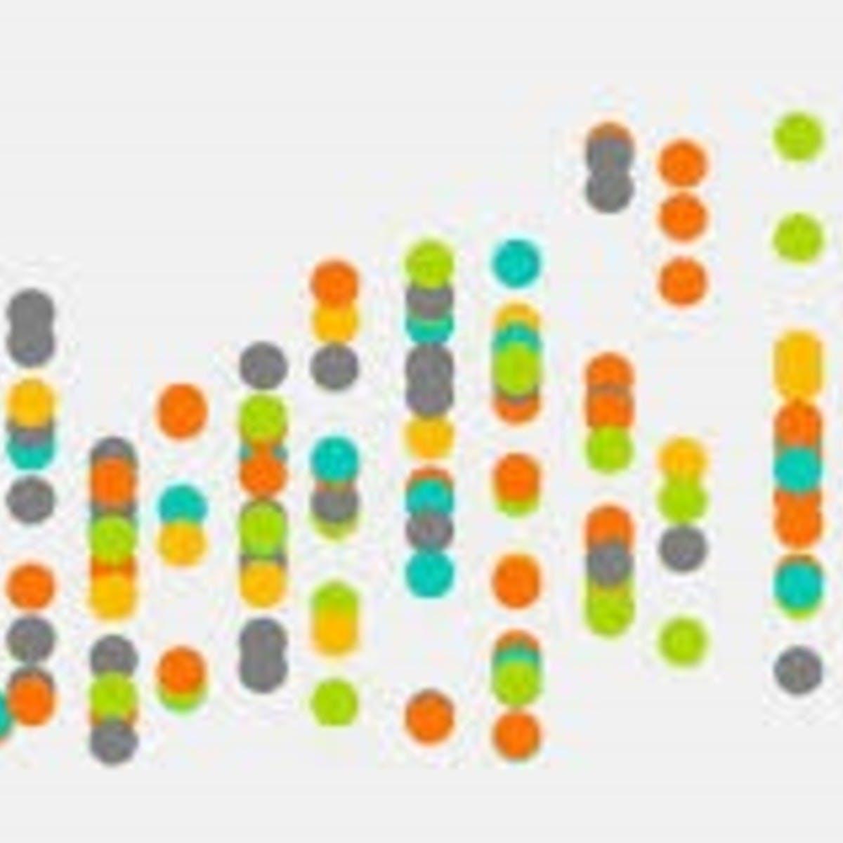 Understanding Your Data: Analytical Tools