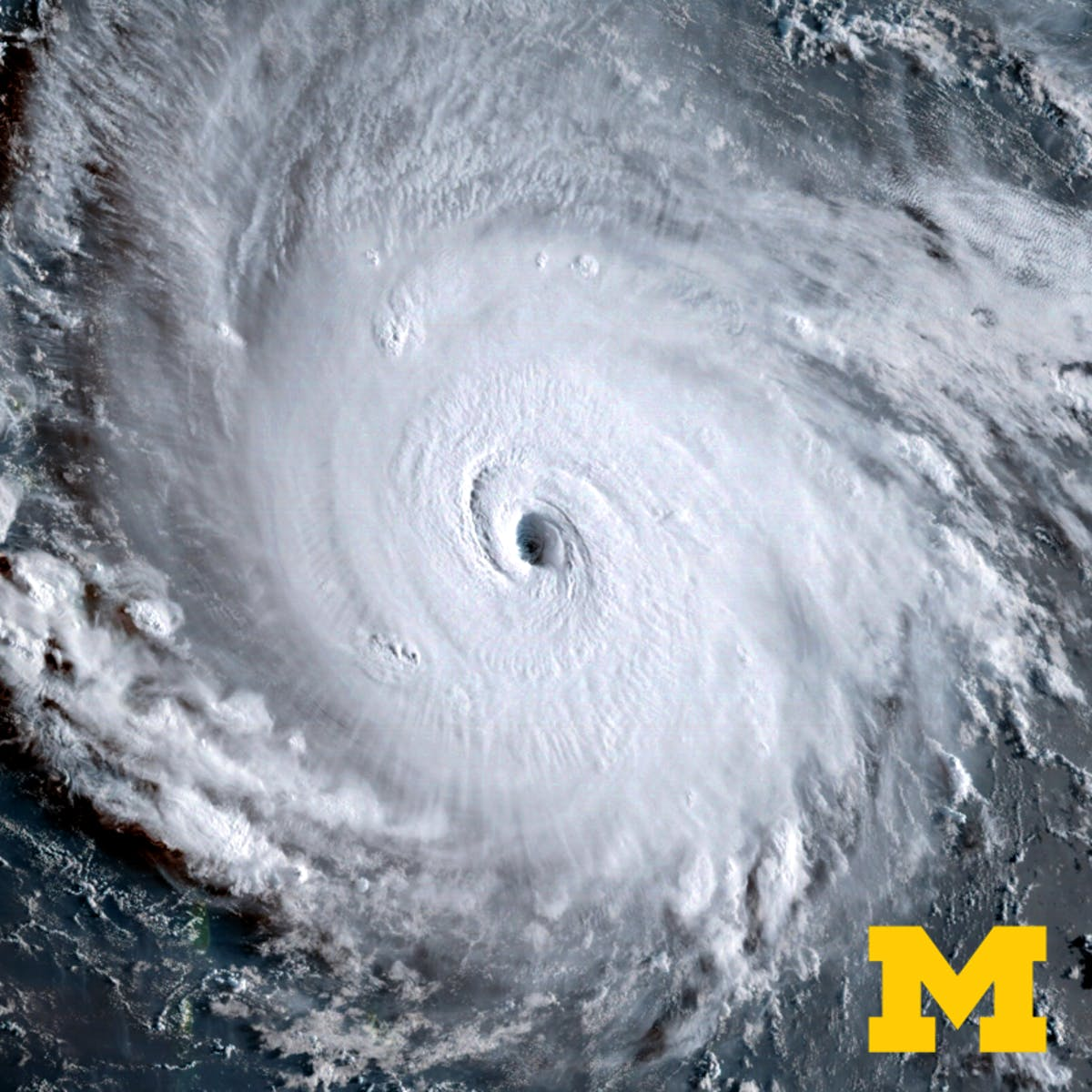 Hurricanes: What's Next?