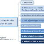 Blockchain for the decision maker