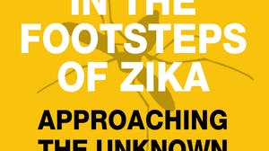 In the footsteps of Zika - approaching the unknown