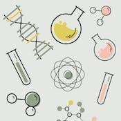 Iniciándome en la Química