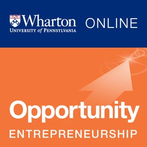 Entrepreneurship 1: Developing the Opportunity