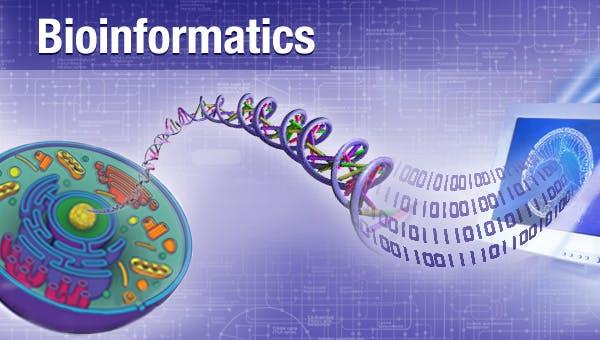 生物信息学: 导论与方法