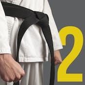 Team Management for the 6 σ Black Belt