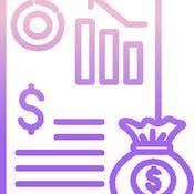 Налоги и налогообложение: специальные налоговые режимы