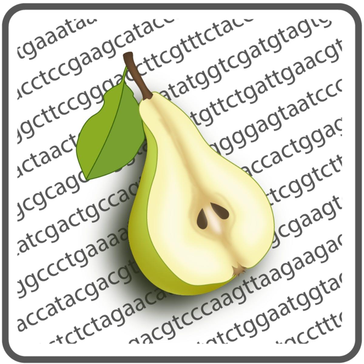 Молекулярная диетология: гены, еда и здоровье