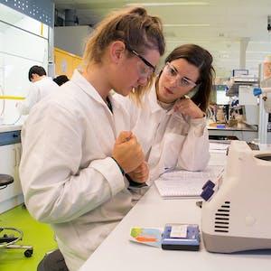 Teaching in University Science Laboratories (Developing Best Practice)