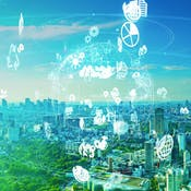 Business Sustainability in the Circular Economy