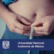 Nutrición y obesidad: control de sobrepeso