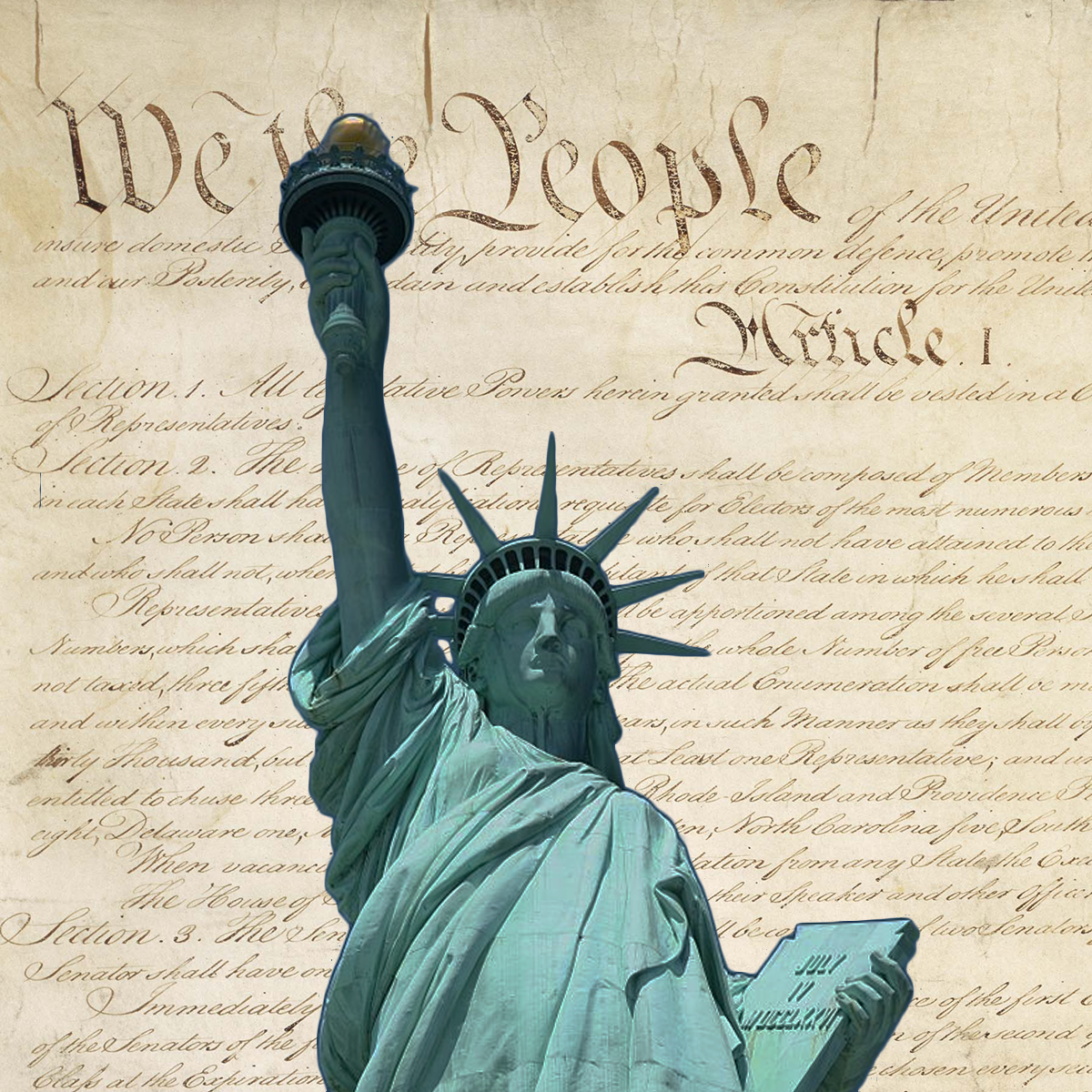 Chemerinsky on Constitutional Law - Individual Rights and Liberties