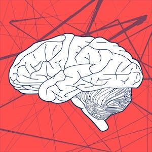 The Neuromarketing Toolbox