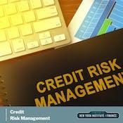 Credit Risk Management: Frameworks and Strategies