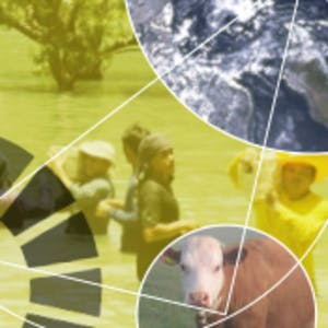 The Sustainable Development Goals - A global, transdisciplinary vision for the future