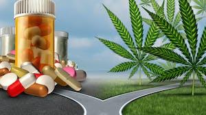 Cannabis, Mental Health, and Brain Disorders