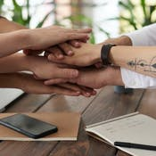 English for Working Together in Business