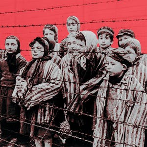 Massachusetts Online Courses The Holocaust: The Destruction of European Jewry for University of Massachusetts-Amherst Students in Amherst, MA
