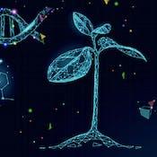 Генетика развития растений
