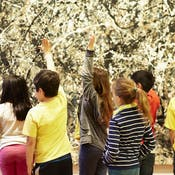 艺术和探究:博物馆课堂教学方法