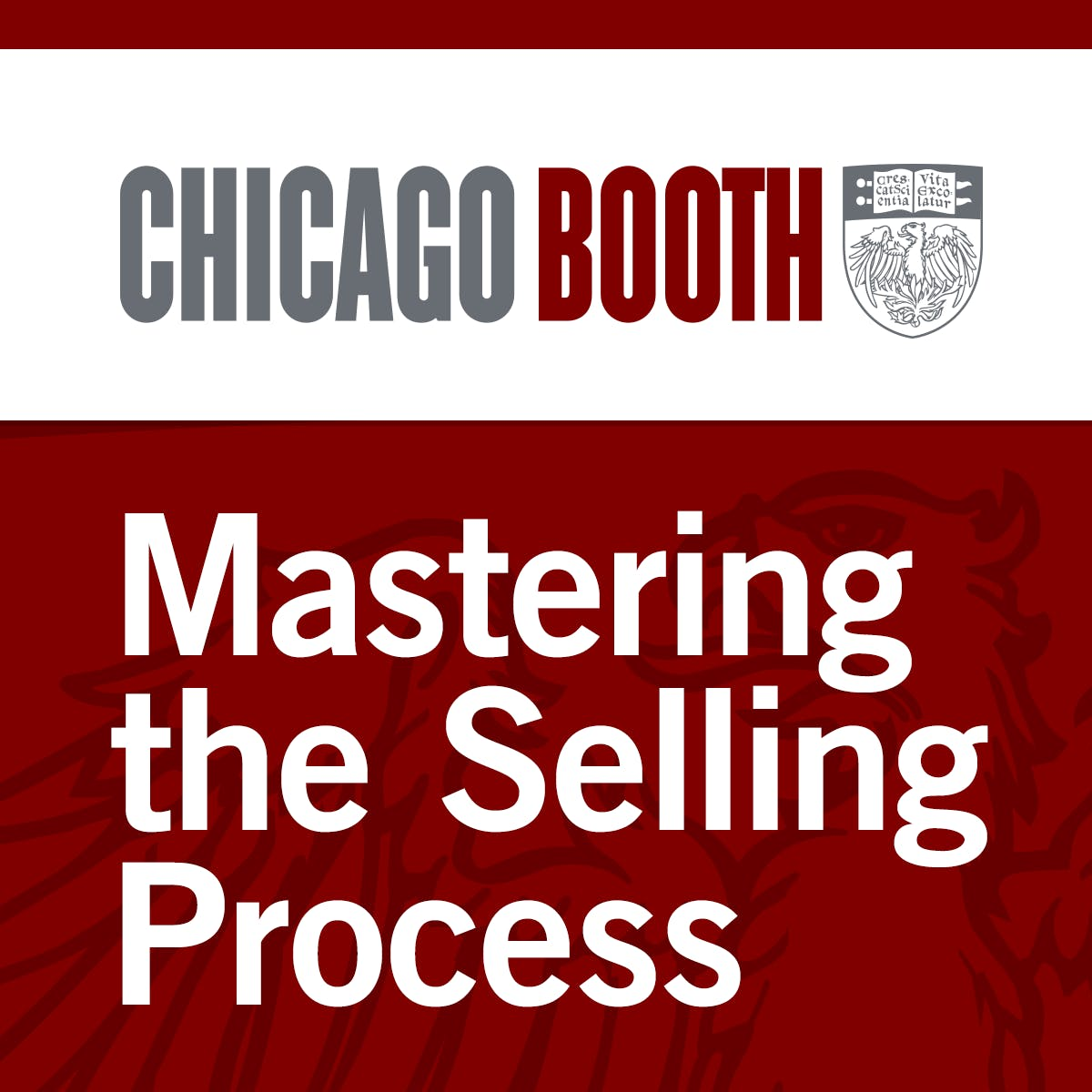 Sales Strategies: Mastering the Selling Process