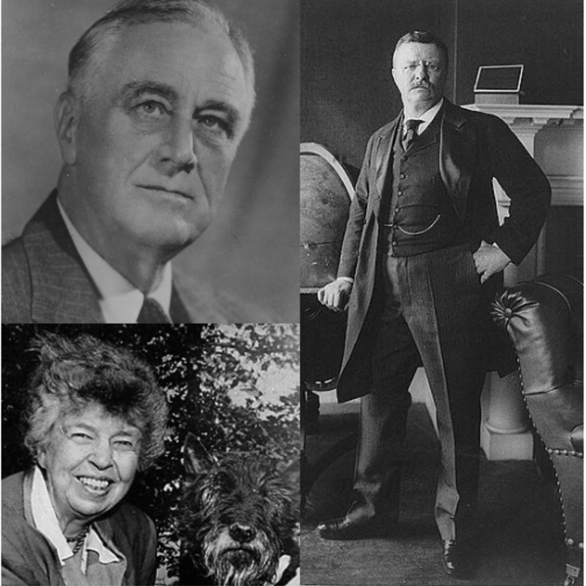 The Rooseveltian Century