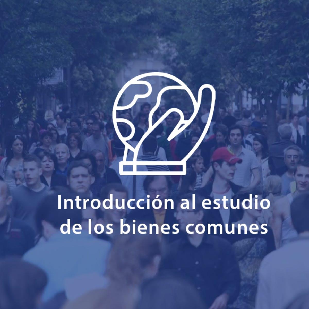 Introducción al estudio de los bienes comunes