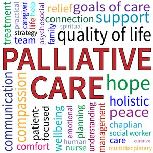 Palliative Care Always Capstone Course