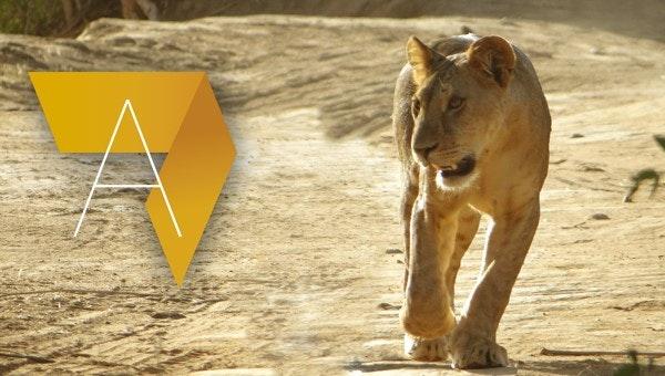 Gestion des aires protégées en Afrique