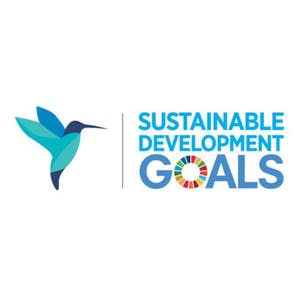 Driving business towards the Sustainable Development Goals