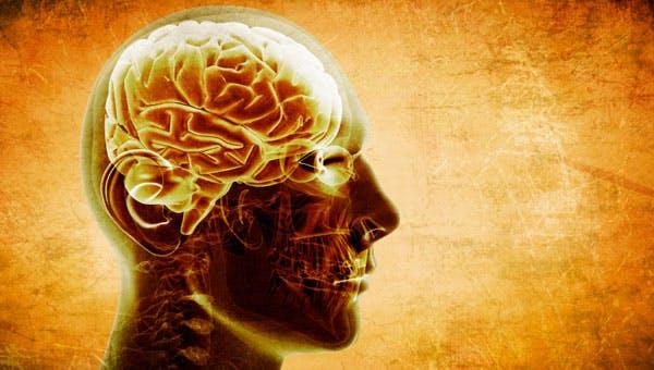 Introdução à Neurologia Clínica