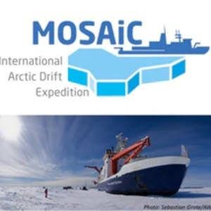 Frozen in the Ice: Exploring the Arctic