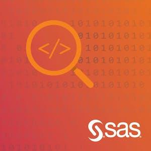 Advanced SAS Programming Techniques