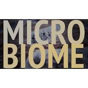 肠道检查:探索身体中的微生物群系
