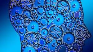 Machine Learning: Classification