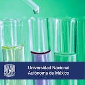 La química en la producción de alimentos y medicamentos
