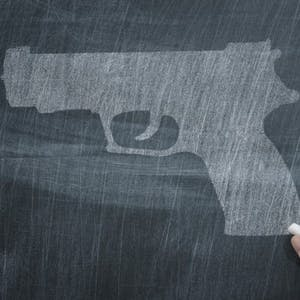Reducing Gun Violence in America: Evidence for Change