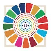 Impact Measurement & Management for the SDGs