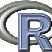 The R Programming Environment