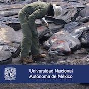 Gestión integral del riesgo de desastres