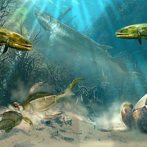 Paleontology: Early Vertebrate Evolution