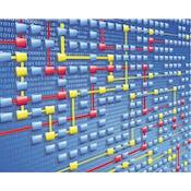 过程挖掘:数据科学实战