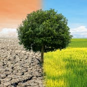 Science and Engineering of Climate Change
