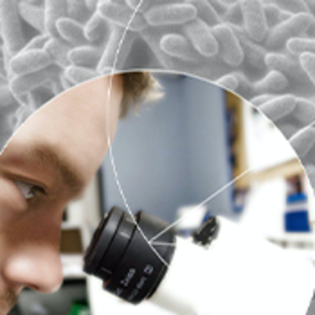 细菌和慢性感染
