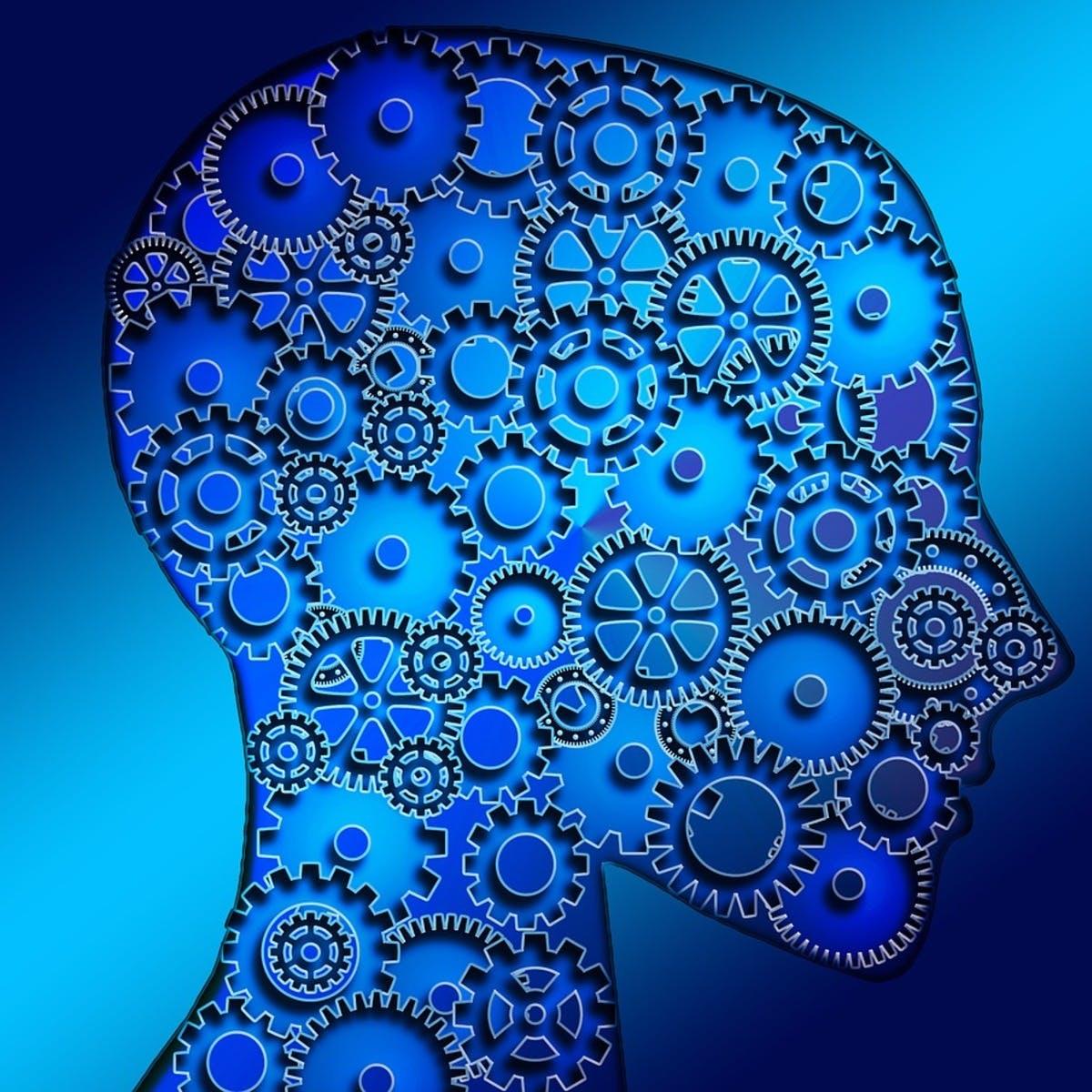 机器学习基础:案例研究
